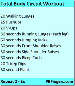 circuit workout total body
