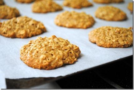 oatmeal banana peanut butter cookies 034-001