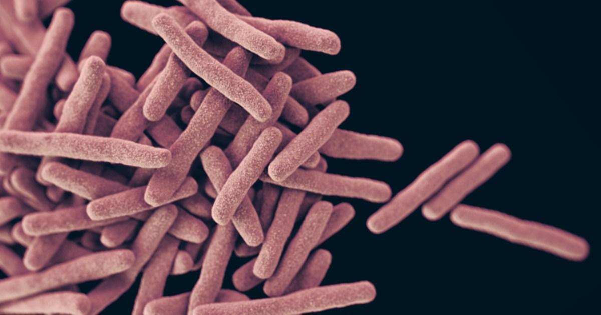 superbugs and misusage of antibiotics essay. Black Bedroom Furniture Sets. Home Design Ideas