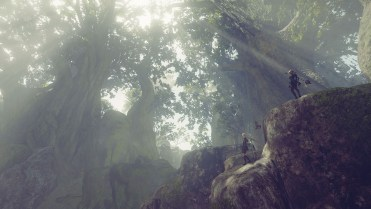 1_forest_zone_scenery_01_f