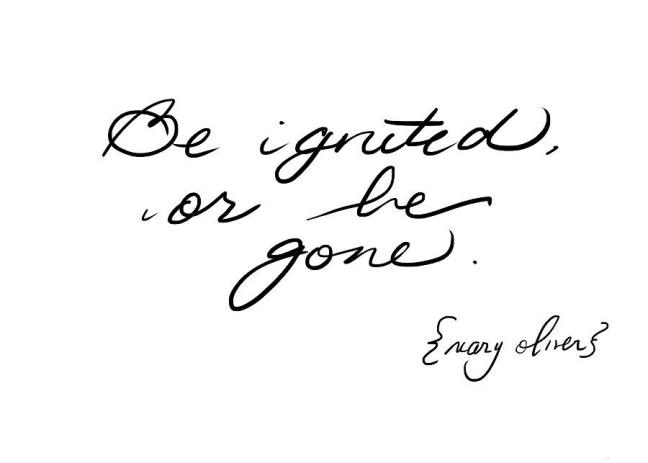 """be ignited or be gone"" Mary Oliver"