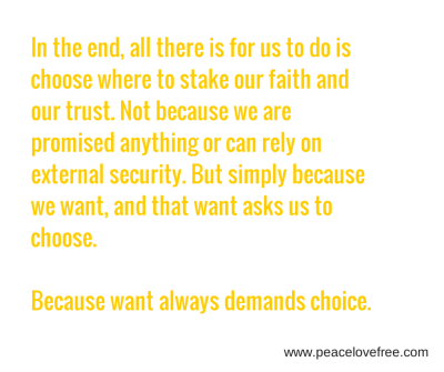 in the end, all there is for us to do is choose where to stake our faith and our trust. Not because we are promised anything or can rely on external security. But simply because we want, and that want asks us to choose. Because want always demands choice.