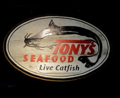 Tony's Live Catfsih
