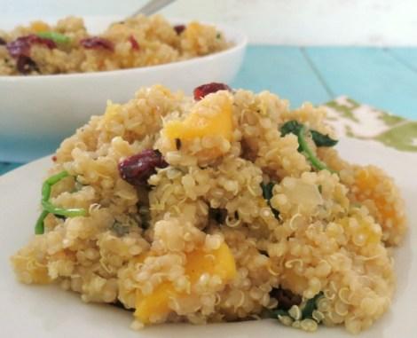 Delicata Squash and Cranberry and Quinoa Salad