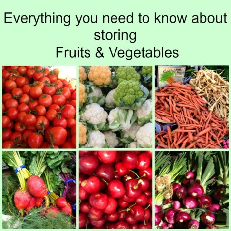 Everything you Need to Know About Storing Fruits and Vegetables