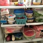 Reducing Food Waste + Recent Eats