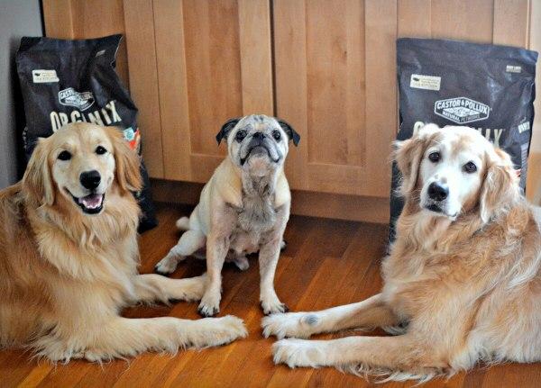 ORGANIX Dog Food