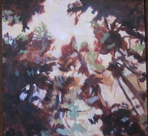 "Opening in Canopy: Olympic Peninsula Acrylic on Canvas 30""x 30"" $1600"