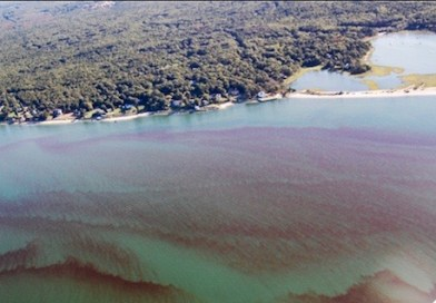 Gobler Lab: Rust Tide Has Spread Across Entire Peconic Estuary