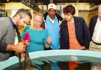 Stony Brook Southampton Shares Ocean Conservation Work With United Nations Dignitaries
