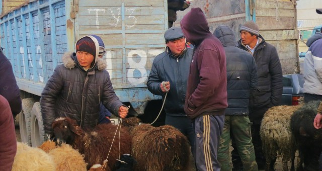 The Karakol Animal Market