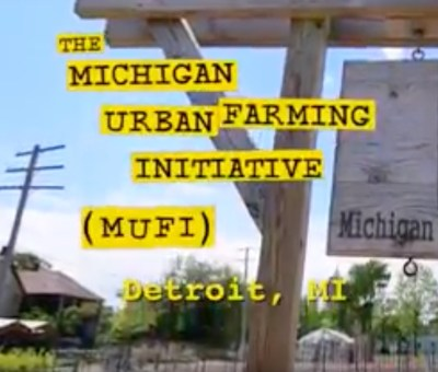 Building Community Through Urban Farming