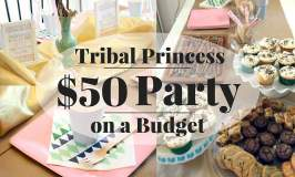 Tribal Princess Party Reveal for Under $50