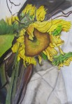 """""""Still Life with Sunflowers,"""" drawing, Mikayla Wagner."""
