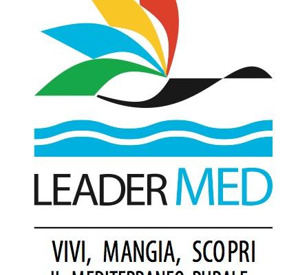 LOGO-LEADERMED