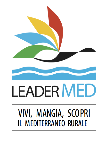 LOGO-LEADERMED