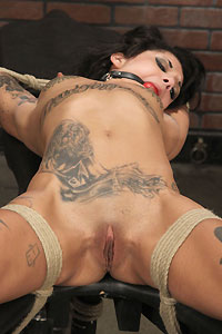 bonnie rotten butt fucking the bully