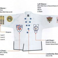 ATA Uniform - Proper Placement of Patches, Chevrons and Collars