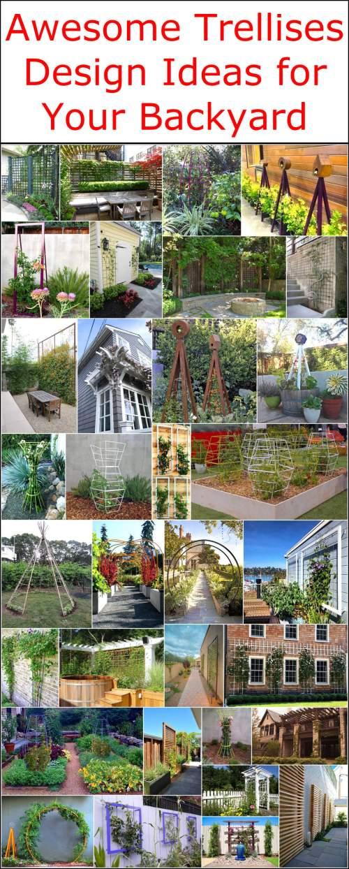 Medium Of Designing Your Backyard