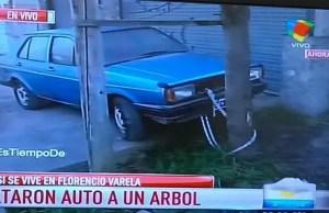 auto_arbol