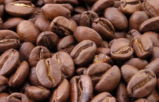 cafecancer01