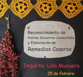 REconocimiento de Plantas Silvestres comestibles y elaboración de Remedios Caseros