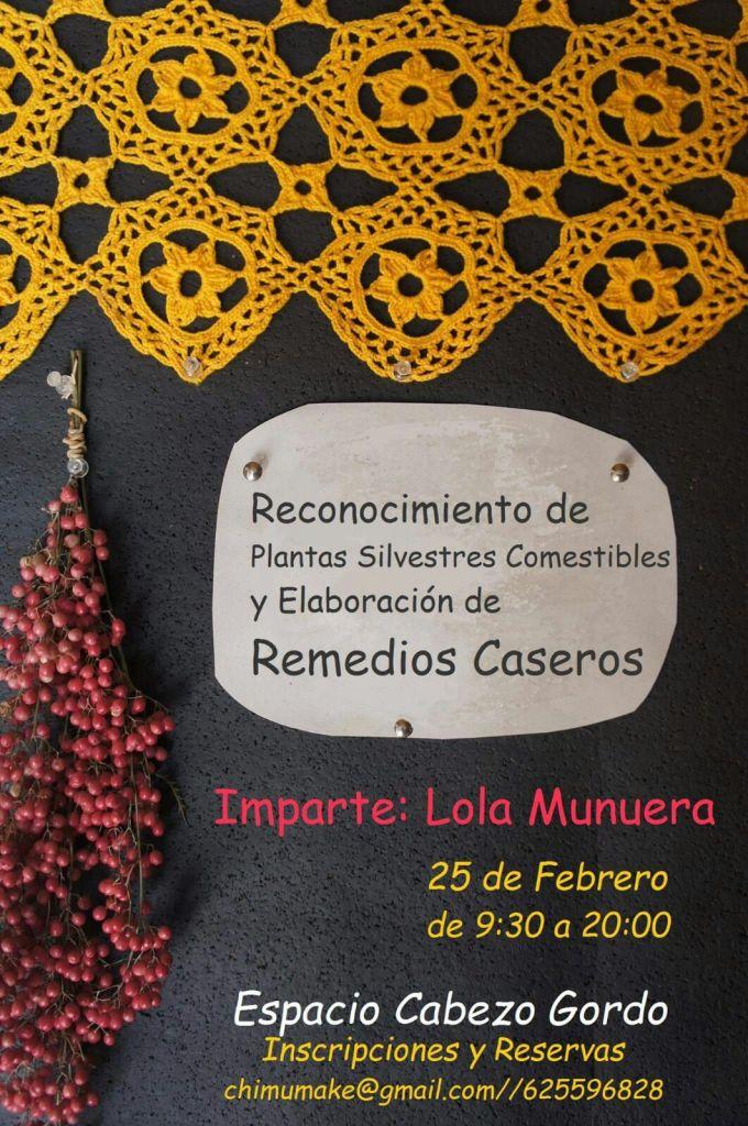Reconocimiento de Plantas Silvestres Comestibles y Elaboración de Remedios Caseros Imparte Lola Munuera 25 de Febrero de 9:30 a 20:00 Espacio Cabezo Gordo Inscripción y reservas chimumake@gmail.com / 625 596 828