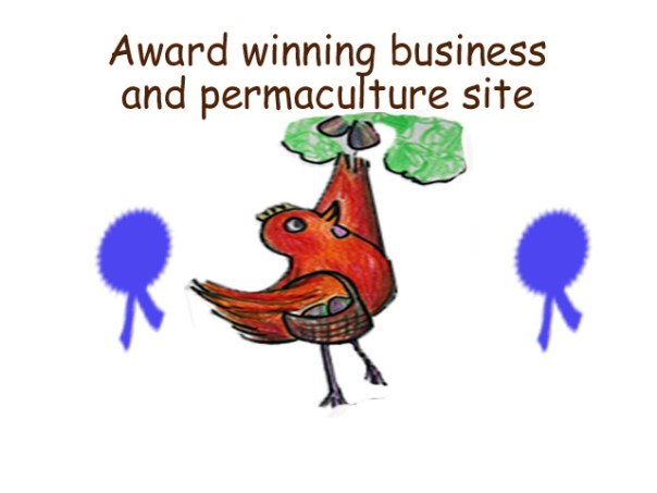 award winning business and site