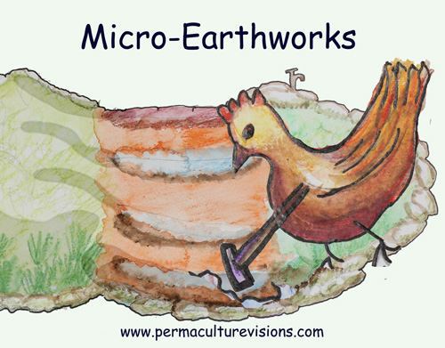 Micro-Earthworks - Gentle Steps Boost Soil-Life