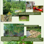 reflexion permaculture
