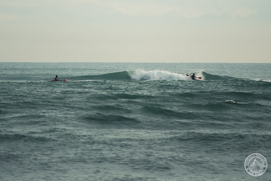 Mehl catches a wave