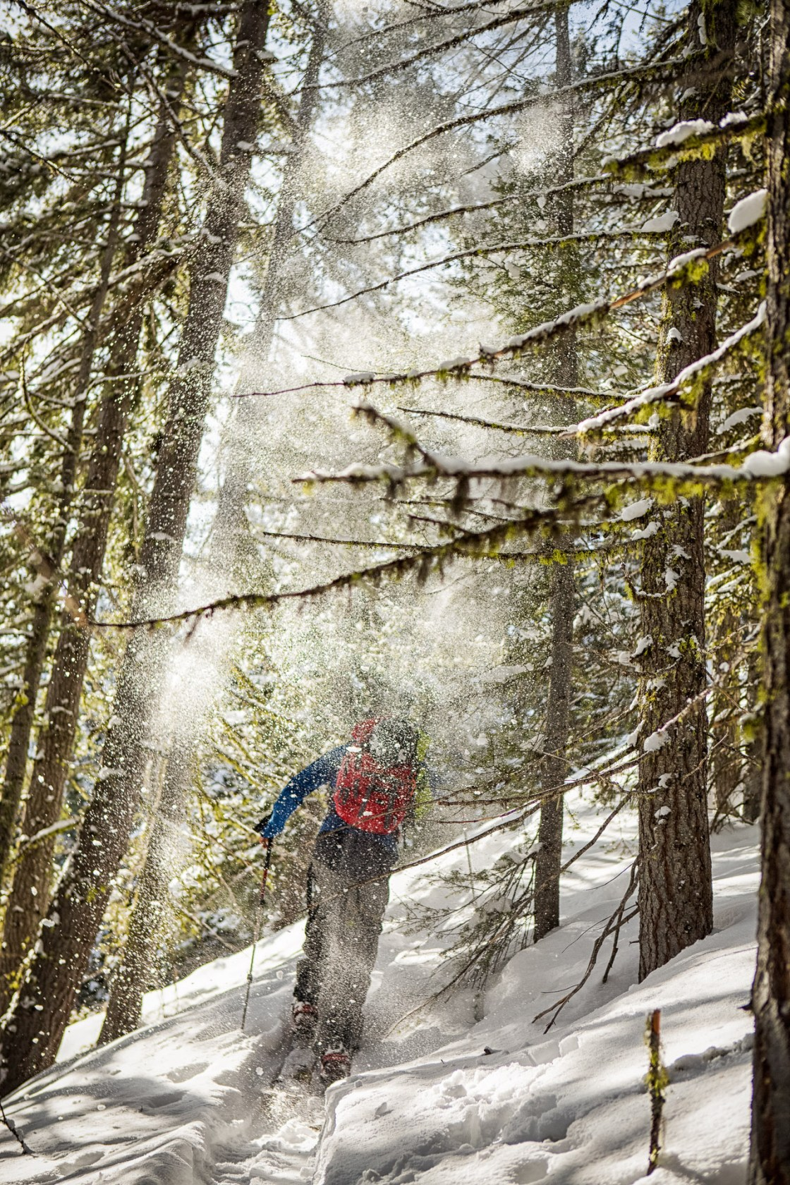 Neil Provo skinning through a lichen-covered snowglobe above Holden Village, Washington