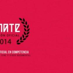 zanate 2014 festival