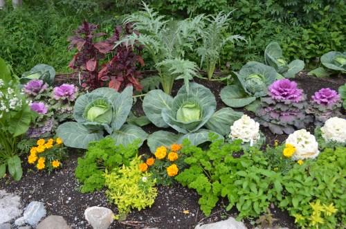 Medium Of Vegetable Garden Planters Ideas
