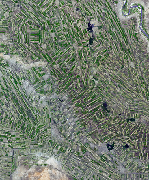Strange and Beautiful Crop Patterns Photographed From Space crop5 mini