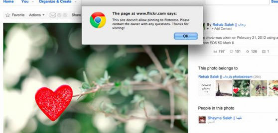 Flickr Disables Pinterest Pinning for Copyrighted Photos pinterest mini