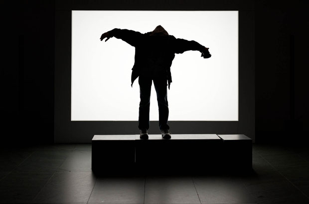 Monsters: Photographs of People Making Silhouettes in a Museum monsters 1