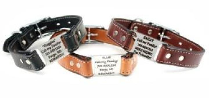 English Leather Collar