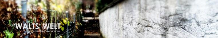 cropped-walts-welt-1.jpg