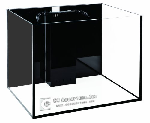 SCA 50 Gallon Starfire Glass Aquariums Complete Package 24x24x20