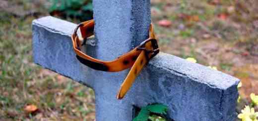 petrede-cachorro-cemiterio-enterro