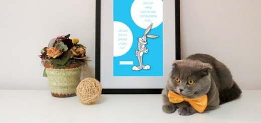 gato-gerente-romenia