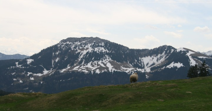 Alpen | James Petty | pettydesign