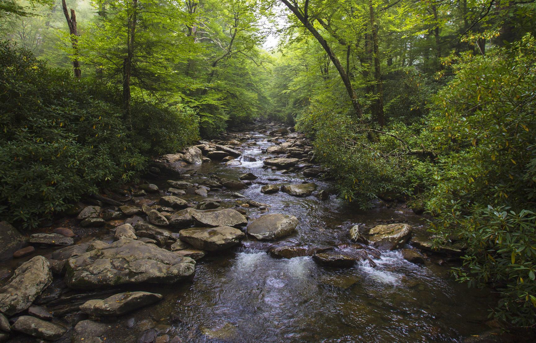 Consigli sulla fotografia di paesaggio: Fotografare i fiumi