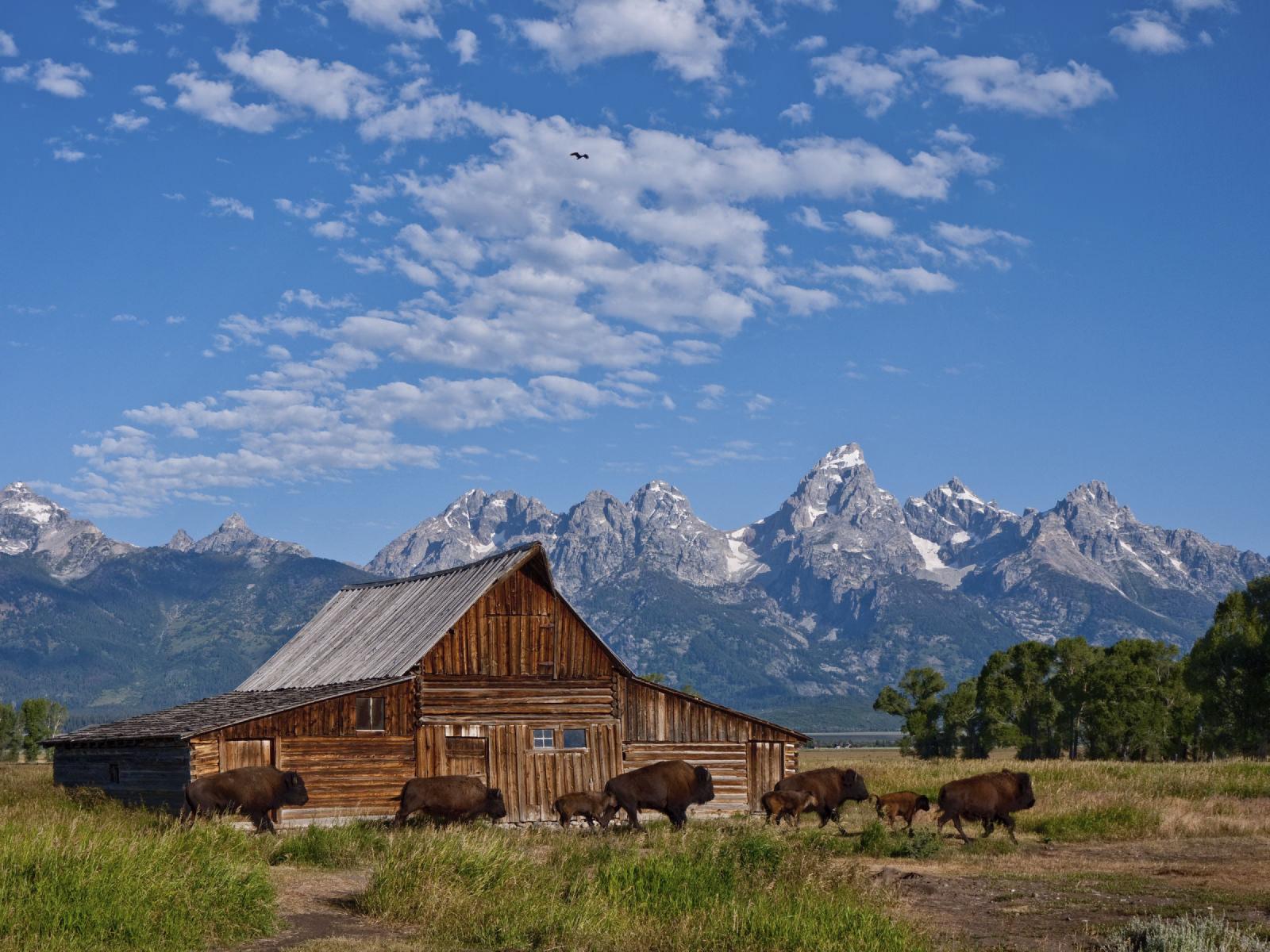 Grand Teton National Park - 4 modi per raccontare meglio le storie con le tue foto