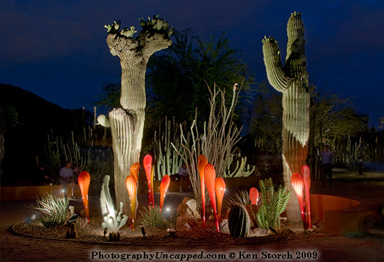 Dale Chihuly glass installation at the Desert Botanical Garden