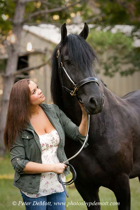 Morgan with Friesian horse