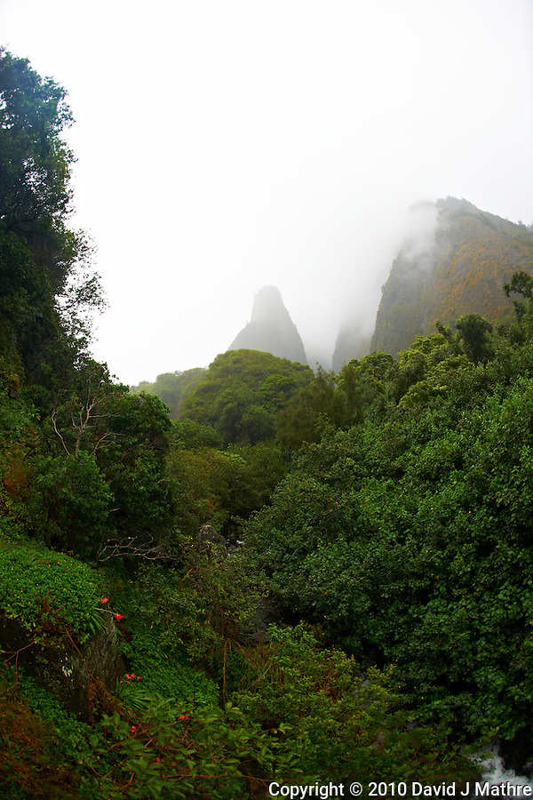 Iao Needle in the Mist. Iao Valley State Park, Maui Hawaii. Image taken with a Nikon D3x and 16 mm fisheye  lens (ISO 100, f/5, 1/100 sec) (David J Mathre)