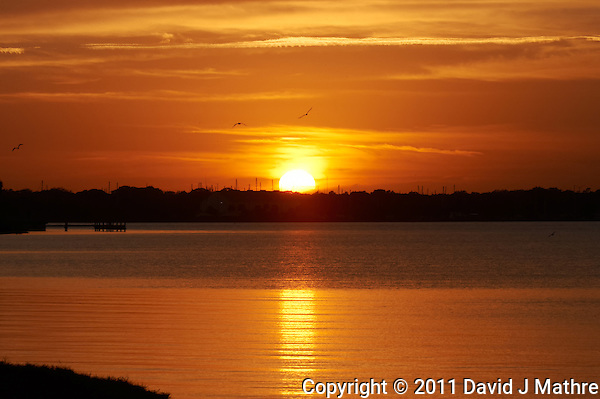 Sunset from Merritt Island, Florida. Image taken with a Nikon D3s and 200-400 mm f/4 VR lens (ISO 800, 200 mm, f/22, 1/320 sec) (David J Mathre)