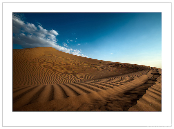 Sand dune in the Arabian Desert, U.A.E. (©2012 Ian Mylam)